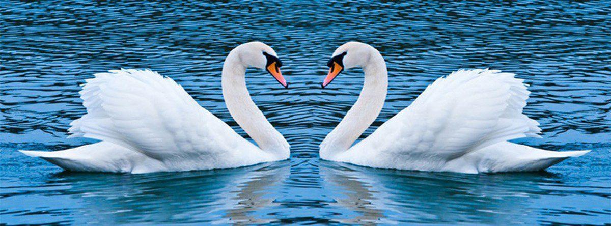 Чистота — запорука духовної сили